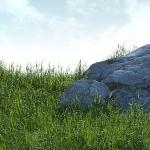 Grass_Thumb