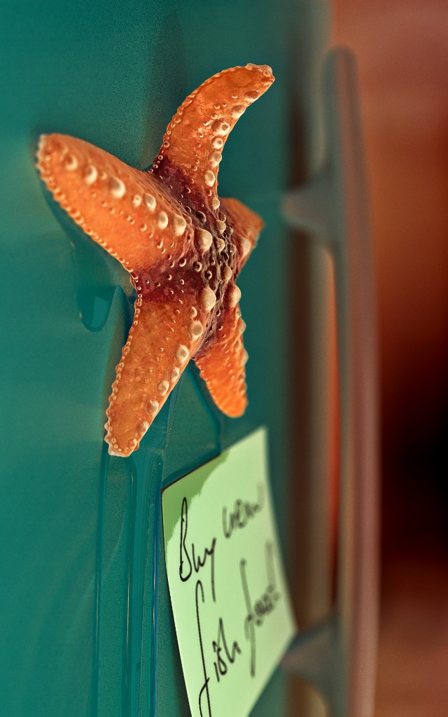 Blender Starfish